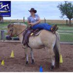 Gabriela Borbas Dual-Aktivierung® und Equikinetic® mobiles Pferdetraining