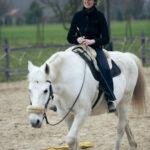 Equi-Training Marion Bryx