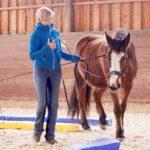Stefanie Barth – Natürliches Pferdetraining