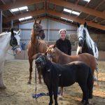 LieBri Mensch und Pferd