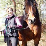 Mobiles Pferdetraining in Blau / Gelb