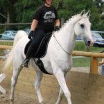 Reite stets zu deiner Freude - und der des Pferdes