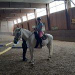 Julias Horseworld