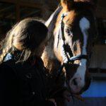 Pferdearbeit (M)it (H)erz