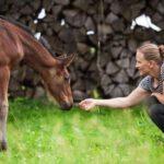 Pferdetraining Marlen Gaschen
